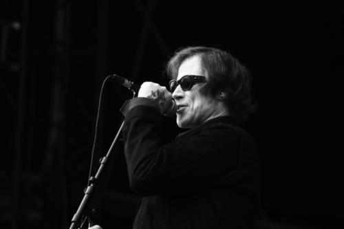 Mark Lanegan - Main Square Festival 2017